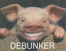 AR-debunk2.jpg