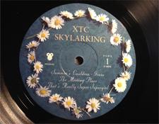 AR-SkylarkingLabel1225.jpg