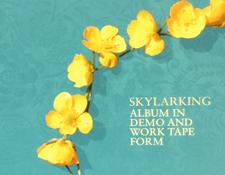 AR-SkylarkingAlbumDemoScreen225.jpg