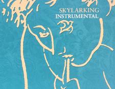 AR-SkylarkingInstrumentalMixScreen225.jpg