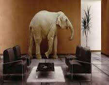AR-ElephantInTheRoom.jpg