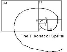 AR-FibonacciSequenceRoom3.jpg