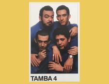 AR-Tamba4bandpic450.jpg
