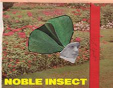 AR-NobleInsect225x175.jpg