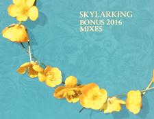 http://audiophilereview.com/images/SkylarkingBonusMixesScreen225.jpg