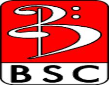 AR-bully Logo.jpg