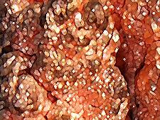 copper11.jpg