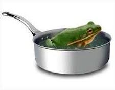 AR-frogs1.jpg