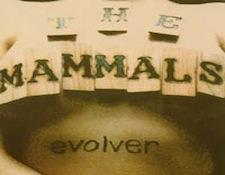 AR-mamals.jpg