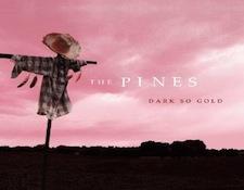 AR-pines1.jpg