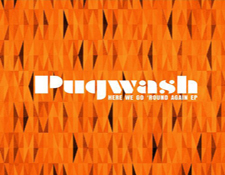 http://audiophilereview.com/images/puwashEP225.jpg