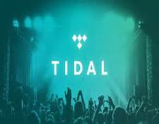 http://audiophilereview.com/images/tidal1a.jpg
