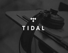 http://audiophilereview.com/images/tidal2a.jpg